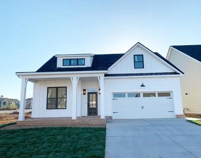 Single Family Home For Sale: 232 Rockcastle Dr