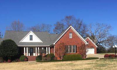 New Johnsonville Single Family Home For Sale: 142 James Road