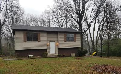 Cookeville Single Family Home For Sale: 343 Vinson Ave