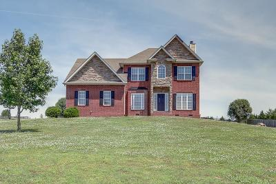 Spring Hill Single Family Home For Sale: 2027 Windsong Dr