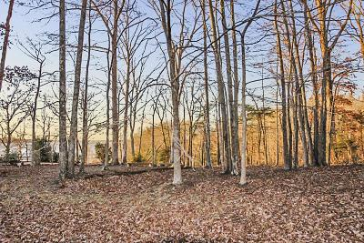 Dover Residential Lots & Land For Sale: 102 Tanasi Trl