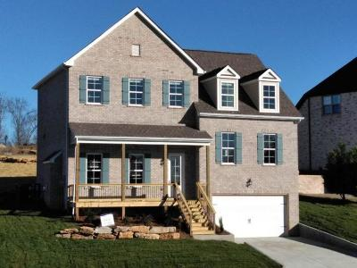 Hendersonville Single Family Home For Sale: 116 Manor Way