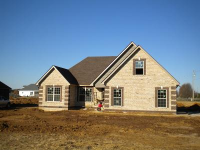 Marshall County Single Family Home For Sale: 1978 Rolling Meadow Ln
