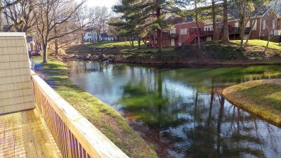 Old Hickory Condo/Townhouse For Sale: 231 Green Harbor Rd Unit 11d #11D
