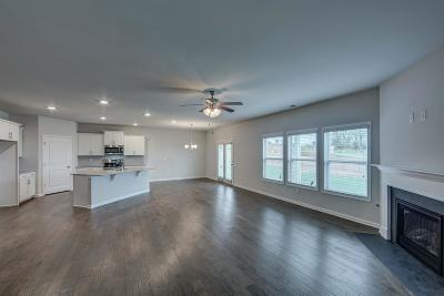 Spring Hill Single Family Home For Sale: 9003 Lockeland Drive, #399