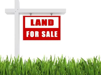 Dekalb County Residential Lots & Land For Sale: Highway 53 Byp