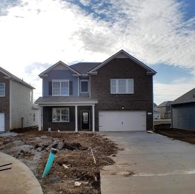 Smyrna Single Family Home Under Contract - Not Showing: 530 Hawk Cove #32