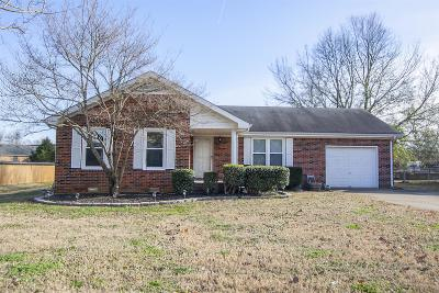 Smyrna Single Family Home Under Contract - Not Showing: 134 Bordeaux Ct