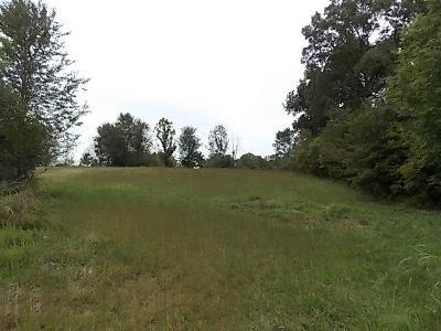 Dickson Residential Lots & Land For Sale: Hillside Dr- Lot #31
