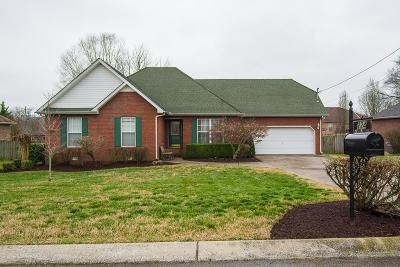 Smyrna Single Family Home For Sale: 224 Valley Ct