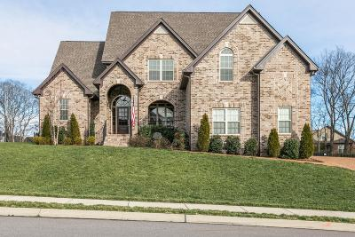 Spring Hill Single Family Home For Sale: 8030 Puddleduck Ln
