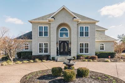 Hendersonville Single Family Home For Sale: 108 Riva Rdg