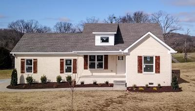 Sumner County Single Family Home For Sale: 3159 E Hwy 31