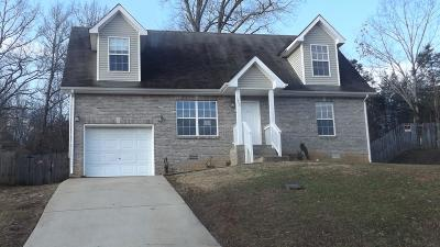 Clarksville Single Family Home For Sale: 1252 Kendall Dr