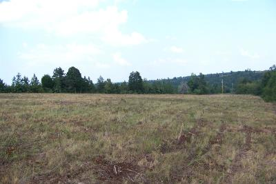 Waynesboro Residential Lots & Land For Sale: Higgins Hollow Rd
