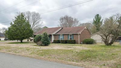 Smyrna Single Family Home Under Contract - Showing: 202 Suffield Dr