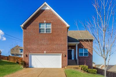 Brentwood  Single Family Home For Sale: 804 Ottoe Ct