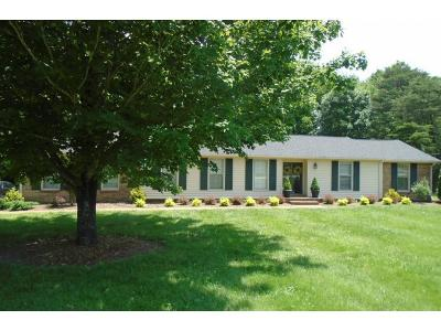 Franklin Single Family Home For Sale: 432 Spring View Dr