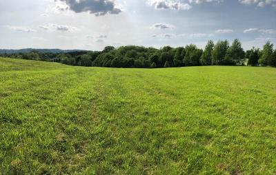 Thompsons Station  Residential Lots & Land Under Contract - Not Showing: 1235 Saddle Springs Dr
