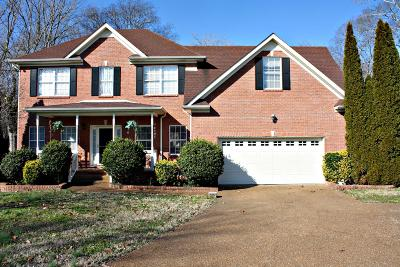 Spring Hill Single Family Home For Sale: 1806 Ireland Ct
