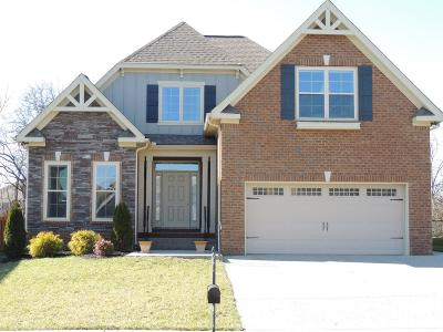 Spring Hill Single Family Home For Sale: 3007 Foust Dr