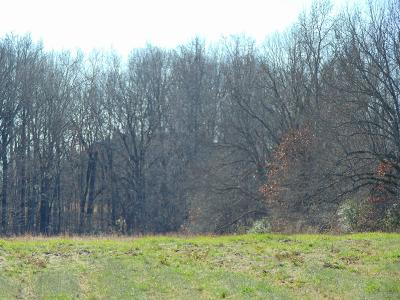 Summertown Residential Lots & Land Under Contract - Showing: Springwater Dr