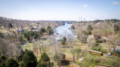 Lebanon Single Family Home For Sale: 300 Twin Cove Dr