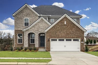 Mount Juliet Single Family Home For Sale: 729 Tennypark Lane