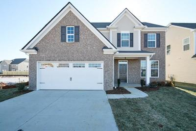 Mount Juliet Single Family Home For Sale: 745 Tennypark Lane