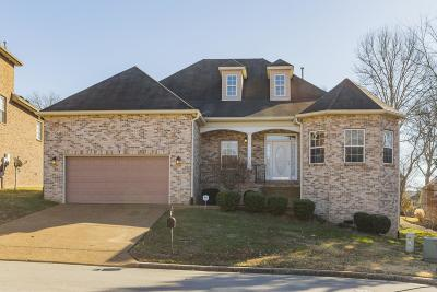 Nashville Single Family Home For Sale: 1105 Hickory Run Ct