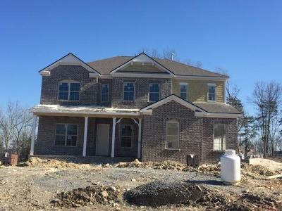 Nolensville Single Family Home Under Contract - Not Showing: 2080 Catalina Way Lot #46