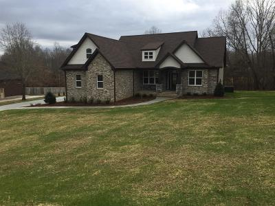 Burns TN Single Family Home For Sale: $379,000