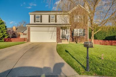 Spring Hill Single Family Home For Sale: 1713 Marie Ct