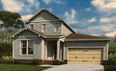 Thompsons Station Single Family Home For Sale: 2109 Maytown Circle Lot 1708