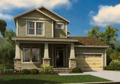 Thompsons Station Single Family Home For Sale: 2113 Maytown Circle Lot 1709