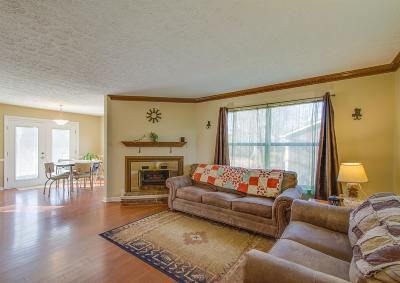 Hermitage Single Family Home For Sale: 1133 Jacksons View Rd
