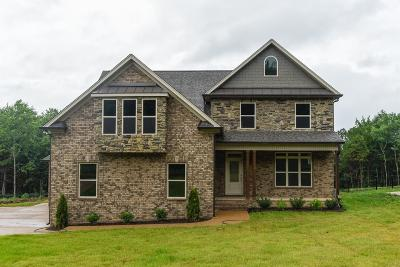 Mount Juliet Single Family Home For Sale: 1457 Mires Rd