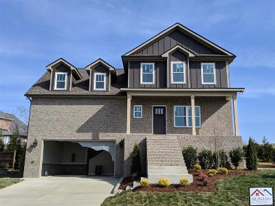 Spring Hill Single Family Home For Sale: 1004 Red Pepper Ridge, Lot 1
