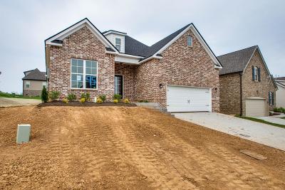 Smyrna Single Family Home For Sale: 5774 Napa Valley Dr