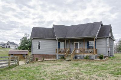 Spring Hill Single Family Home For Sale: 3606 Fairway Fields Ln