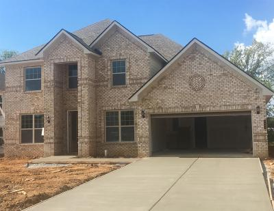 Murfreesboro, Rockvale Single Family Home For Sale: 52 Burrows Avenue Oxf 52