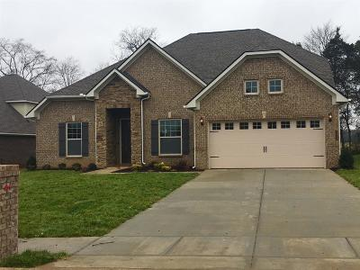 Murfreesboro, Rockvale Single Family Home For Sale: 51 Burrows Avenue Lyr 51
