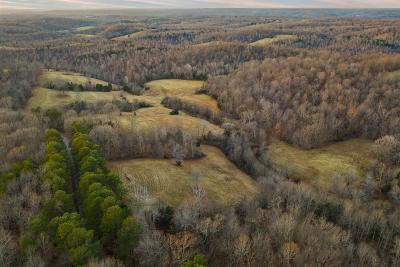 Christian County, Ky, Todd County, Ky, Montgomery County Residential Lots & Land For Sale: 11 Benton Ridge Rd