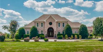 Franklin Single Family Home For Sale: 513 Lake Valley Ct