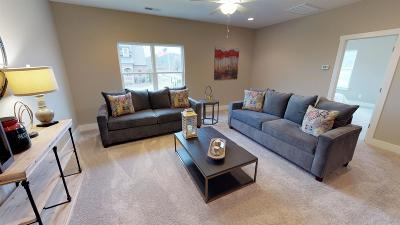 Nolensville Single Family Home For Sale: 736 Vickery Park Drive