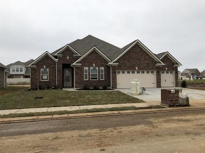 Single Family Home For Sale: 933 Sapphire Drive Lot 161c
