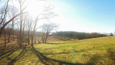 Williamson County Residential Lots & Land For Sale: 4451 Harpeth School Rd