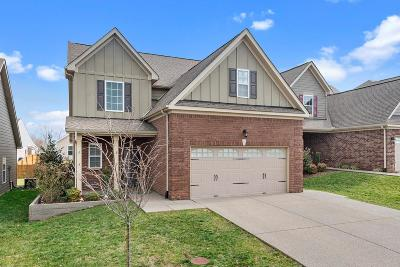 Mount Juliet Single Family Home For Sale: 361 Dunnwood Loop