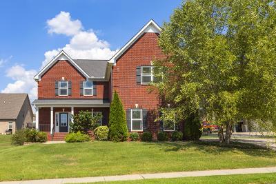 Spring Hill Single Family Home For Sale: 4007 Gari Baldi Ct