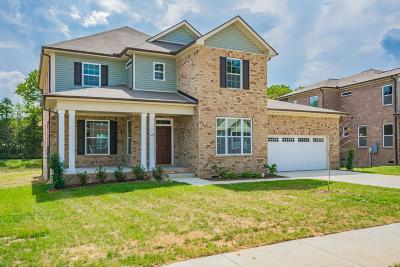 Smyrna Single Family Home Under Contract - Not Showing: 605 Inez Dr Lot 9